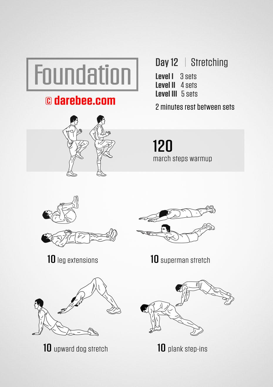 foundation 6 instruction manual