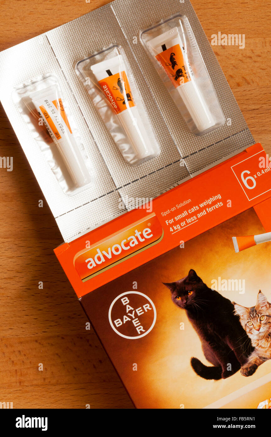 advocate flea and worm treatment for cats instructions
